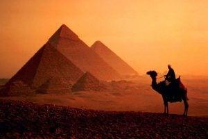 egypt-camel-totally4women