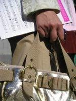woman's hand carrying handbag