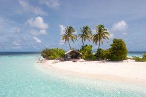 Desert Island article