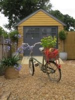 Flying the Coop: downsizing and starting a new life