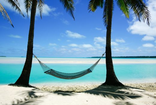 Hammock between two trees on a tropical island