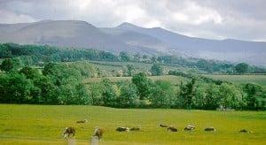 The joys of walking in Wales