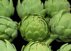 a selection of artichokes