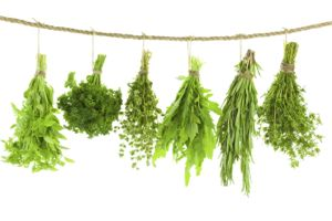 Row of spices and herbs handing from a rope