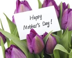 Purple tulips with Happy Mothers Day
