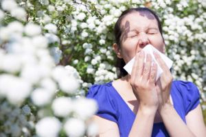 Hayfever - article