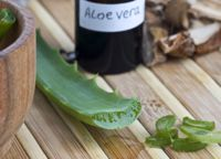 The benefits of aloe vera blog