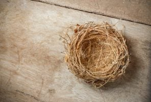 Empty bird's nest on table representing empty nest syndrome