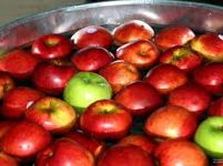 A bowl of apples for bobbing