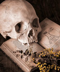 Shakespeare book with a skull on it