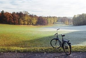 bike on the edge of a park on a winters day