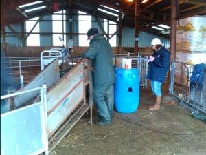 Recording data in a farm outbuilding