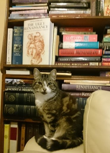Jeanne's cat