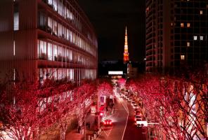 Roppongi Christmas illumination