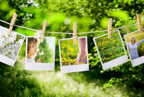 prints with natural concepts pictures