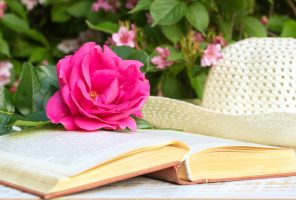 Pink rose with drops of water, the book and hat on the table in the summer garden in evening sunlight, close up.