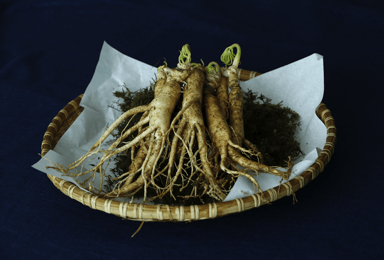 ginseng stems in a bowl