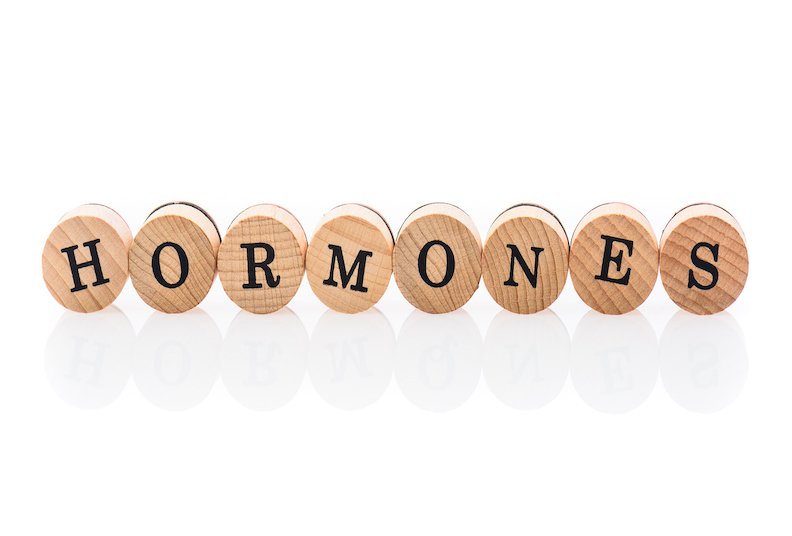 What happens to our hormones during menopause