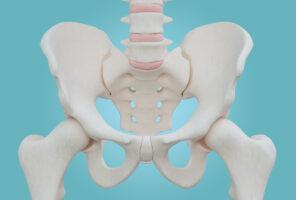 bones, osteoporosis, menopause, symptoms, solutions