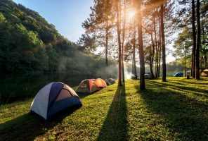 Adventures Camping and tent under the pine forest near water outdoor in morning and sunset at Pang-ung, pine forest park ,