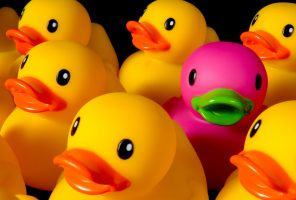 Dare to be different – rubber ducks on black
