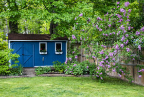 Blue garden she shed in the backyard