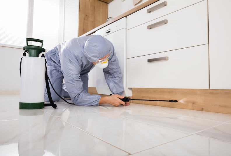 How does an exterminator make your home pest free?